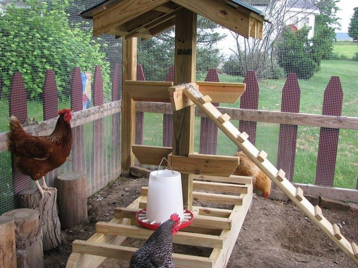 kitchen trash can sizes aid knife set build a jungle gym for your backyard chickens! | diy ...