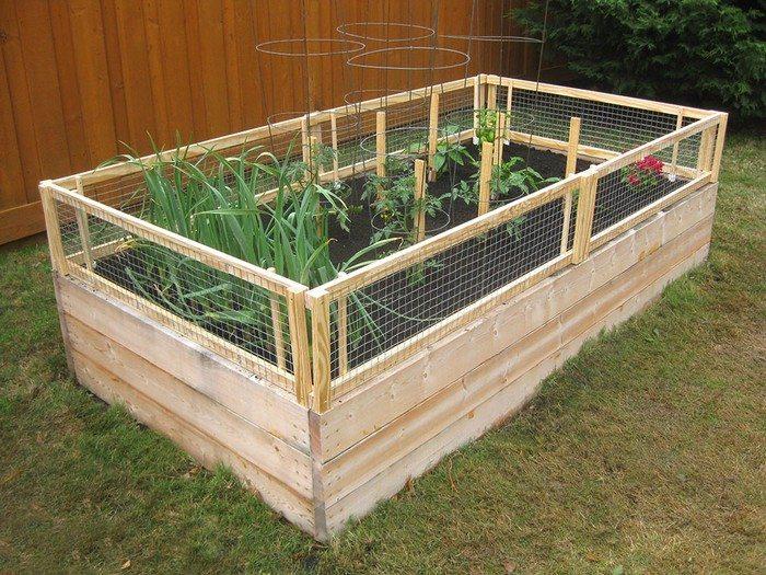 Indoor Vegetable Garden Box