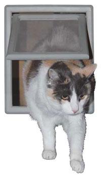 Screen Fit™ Pet Door