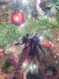 Succulents & Spruce Christmas Tree {Dream Tree Challenge ...