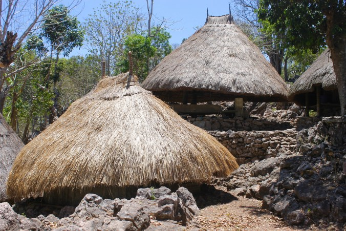 Beehive huts of Tamkessi traditional village