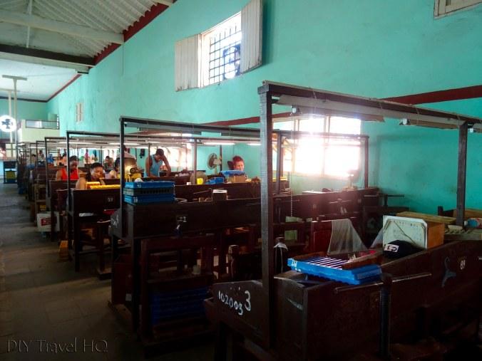 Pinar del Rio cigar factory