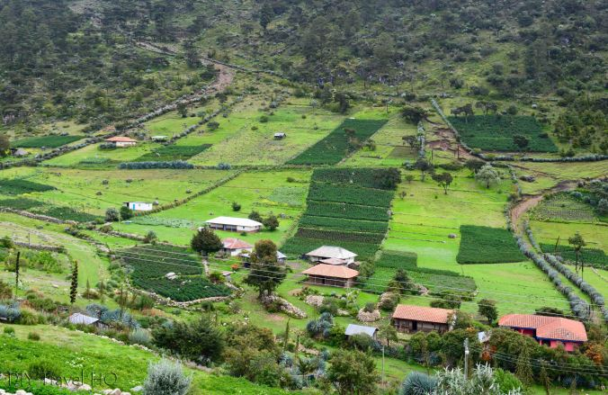 Exploring La Ventosa Farming Fields