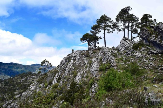 Hike La Torre Craggy Peak