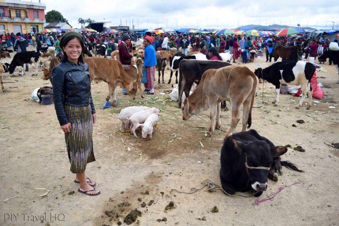 San Francisco El Alto Animal Market and Sheena