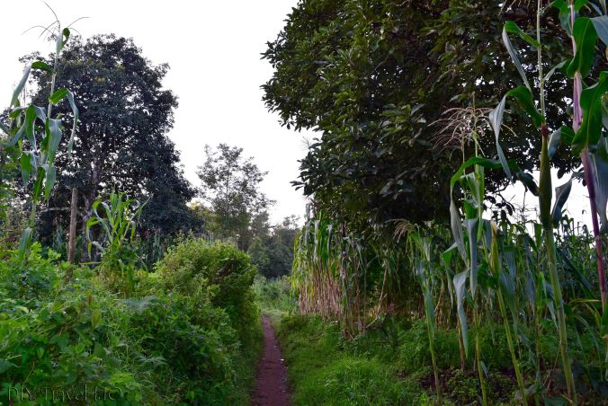 Indian Nose Path from Santa Clara La Laguna