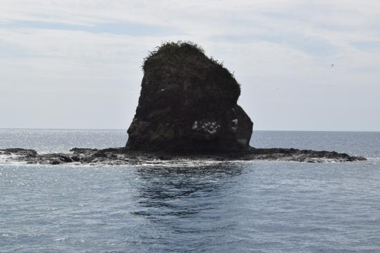 Monkey Head Island Playas del Cocos