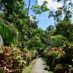 La Chosa del Manglar: Tropical Garden Retreat in Puerto Jimenez