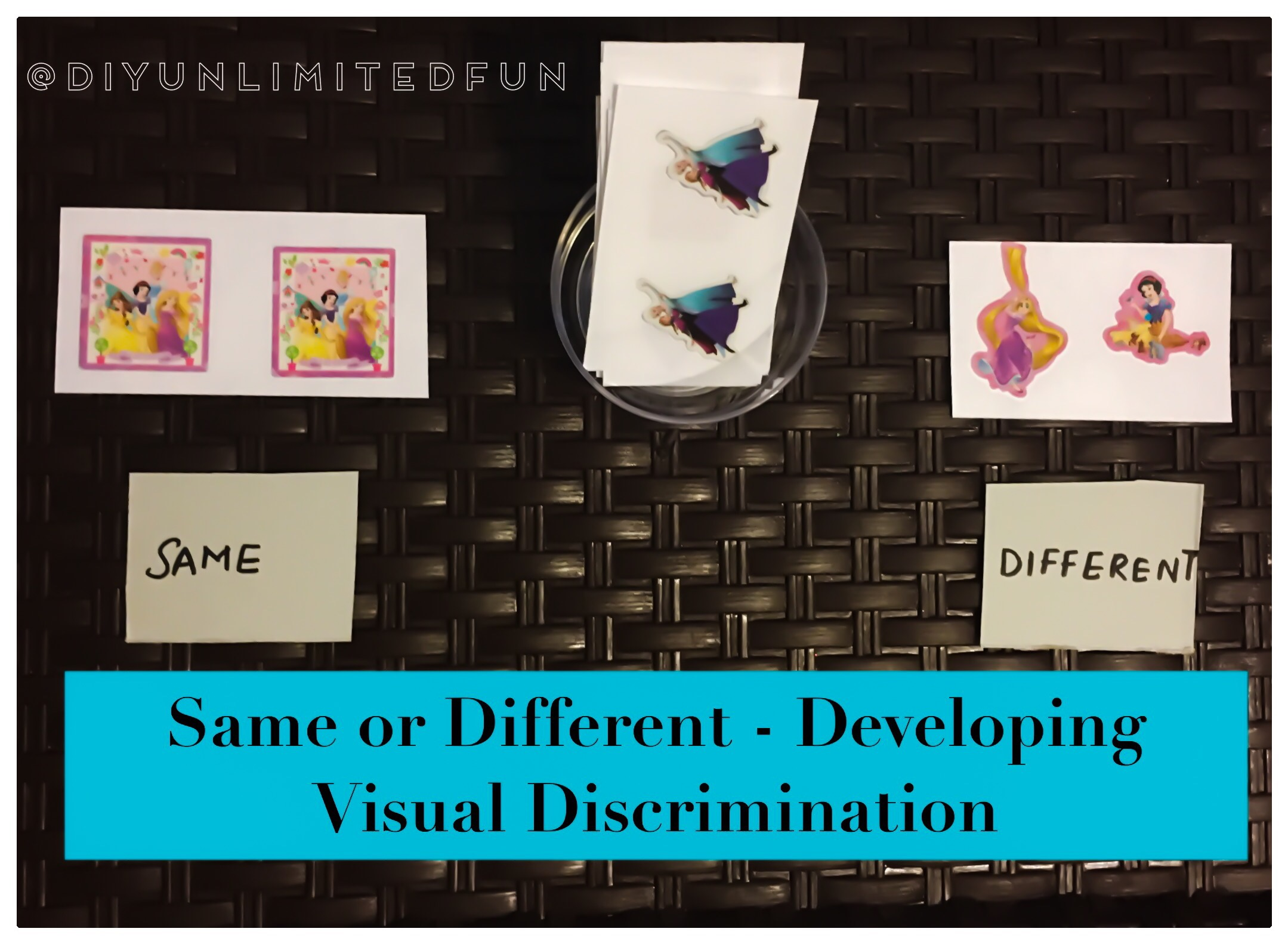 Same Or Different Developing Visual Discrimination