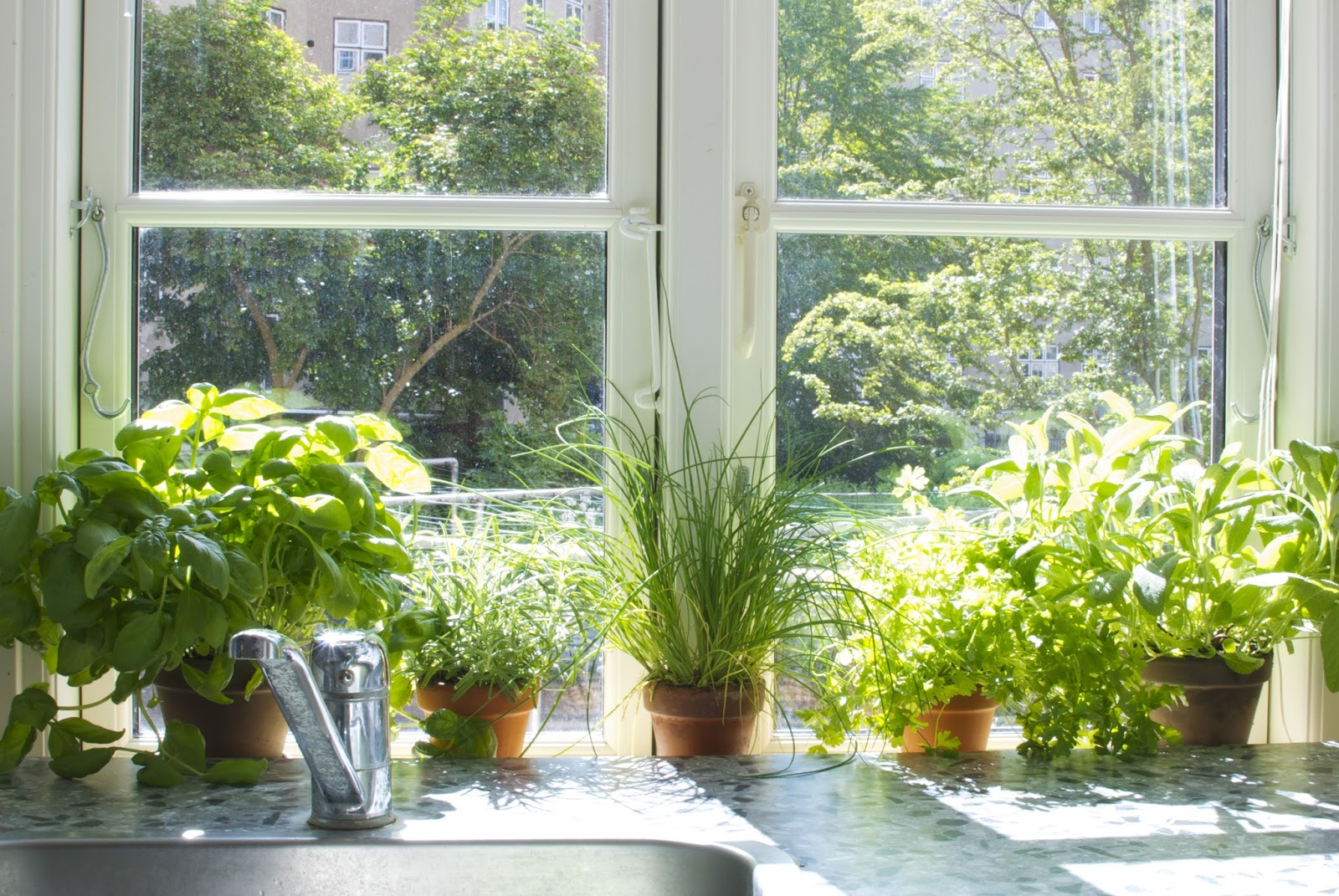 Grow Your Own Indoor Herb Garden Indoor herb garden grow one on your own with these tips diyvila indoor herb garden grow one on your own with these tips workwithnaturefo