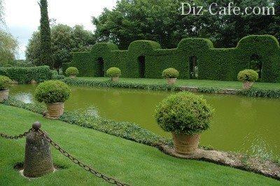 Topiary Schroen no pote