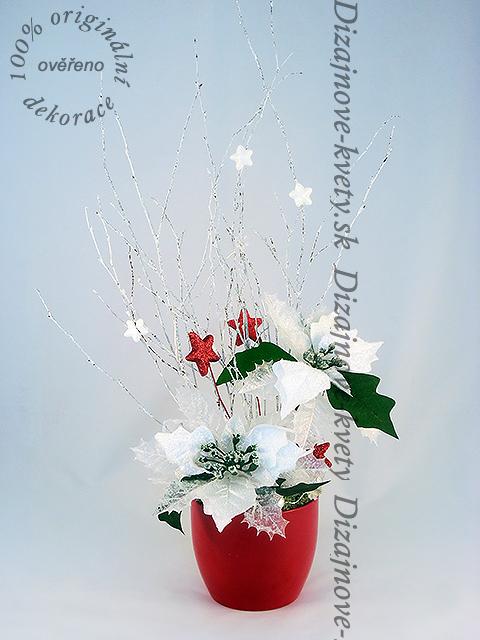 Vianočné ruže svietiace.