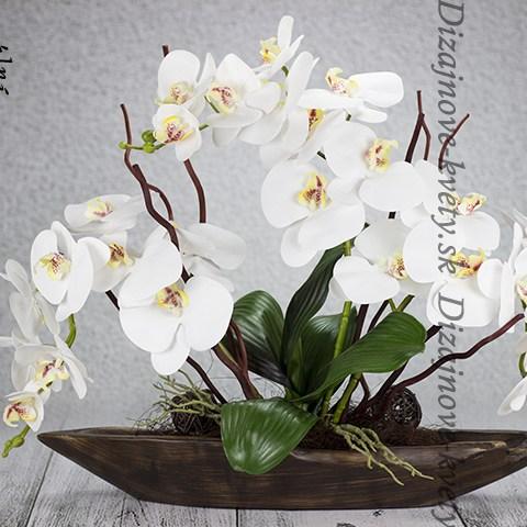 Luxusné dekorácia s bielou orchideou v drevenej loďke