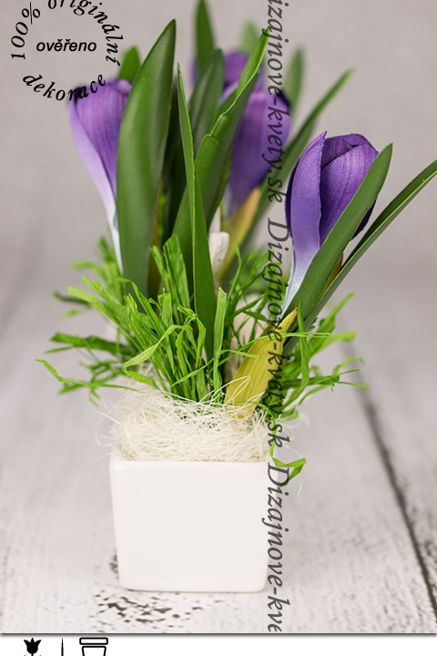 Fialové kvety Crocus do byta v keramike Paramit