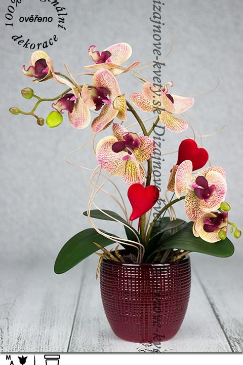 Valentínska orchidea sa srdiečkami