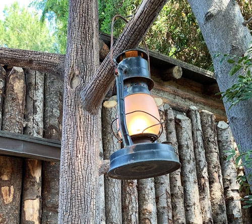 Camp lantern hanging on tree in Frontierland Disneyland