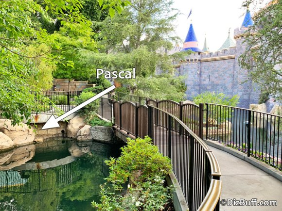 Image showing location of hidden Pascal the chameleon in Fantasy Faire in Disneyland California with arrow pointing to exact location - he is a character from the movie Tangled