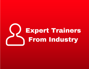 expert trainers