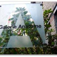 // Le documentaire sur la GALERIE ANATOME a besoin de vous! //