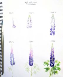 33 + Most Popular Ways To Watercolor Paintings Easy Step By Step Flower 64