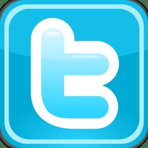 Twitter-Logo-300x300