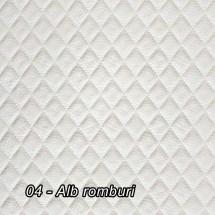 04 - Alb romburi