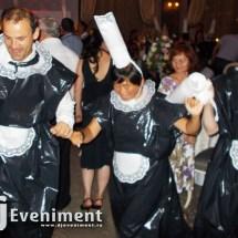 dj nunta timisoara