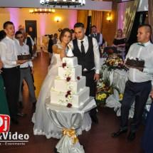 dj lumini decorative fum nunta foto video casa regia orastie (45 of 46)