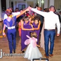 dj lumini fum nunta foto video timisoara