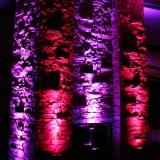 purple-pink-uplighting-pinspotting