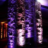purple-white-pinspotting-uplighting