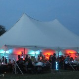 tent-uplighting-pinspotting-services