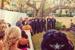 Westin Wedding Orlando