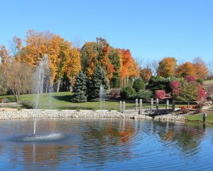 Hubbard Hill park_autumn