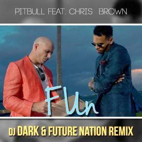 Pitbull - Fun ft.Chris Brow (Dj Dark & Future Nation Remix)