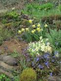 in the garden 4