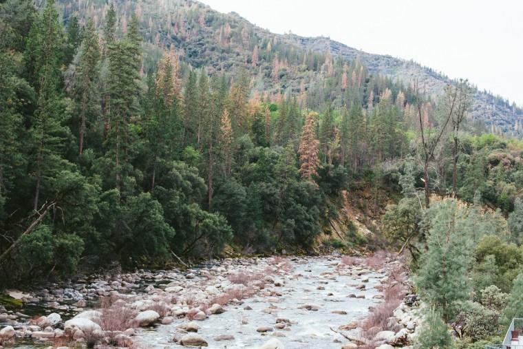 Yosemite_Blog-45