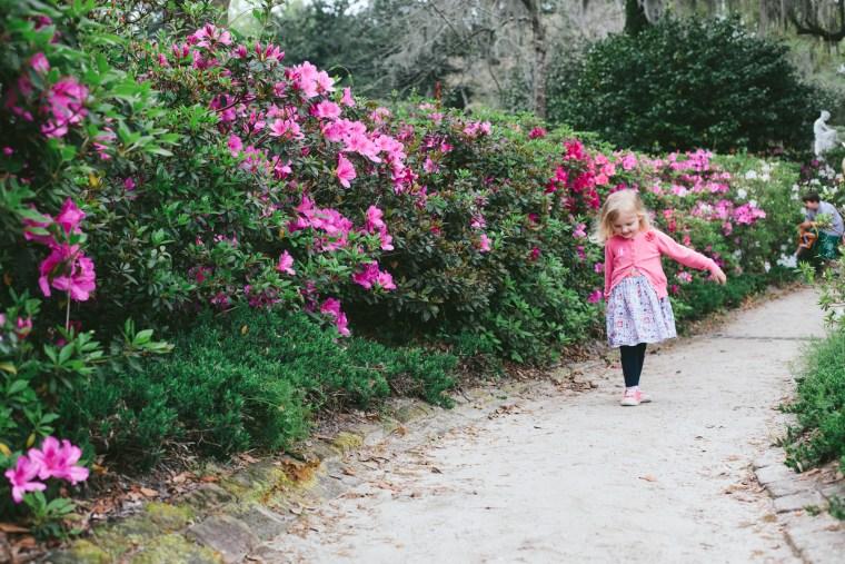 Charleston_Spring-11