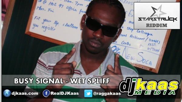 Busy Signal- Wet Spliff [Explicit] (Feb 2014)