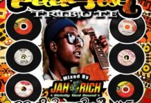 best-peter-tosh-songs-tribute-mega-dj-mixtape