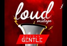 dj-gentle-new-songs-loud-mix