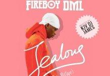kjv dj james ft fireboy jealous the mixtape