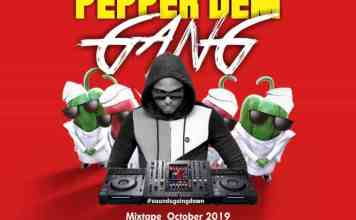 DJ D20 Pepper Dem Gang Mix bbnaija mixtape download
