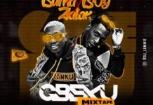 best of burna boy and zlatan