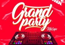 dj mikewealth grand party mixtape