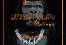 dj anonymous african giant mix