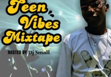 dj small teen vibes mixtape download
