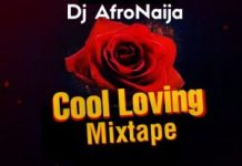 DJ Afronaija Cool Loving Mix download