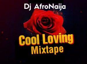 DJ Afronaija Cool Loving Mix download