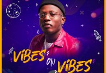 DJ Kentalky Vibes On Vibes Mix - Naija Party Mix 2020